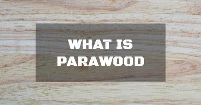 What is Parawood ? It's more popular than you think!