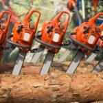 8 Tips on How to Use a Chainsaw Safely | Chainsaw Safety Tips