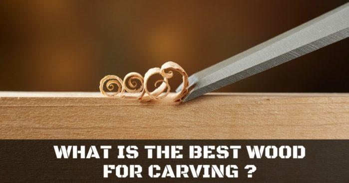What is the best wood for carving