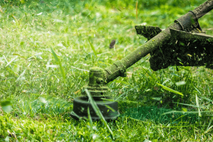 Here Are the Top 5 Best Trimmer Lines for Your Lawn Mowing Needs