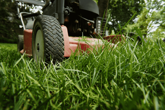 Lawn Mower White Smoke Then Dies: What Are The Causes