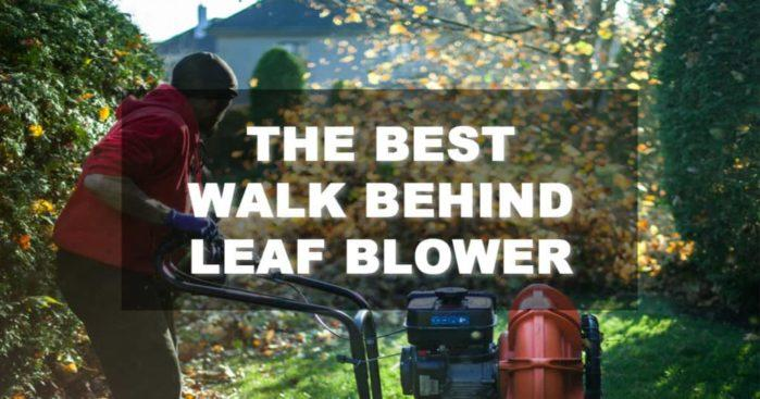 Best Walk Behind Leaf Blower – What to Look For