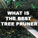 What is The Best Tree Pruner 2018? Let This Guide Tell You!