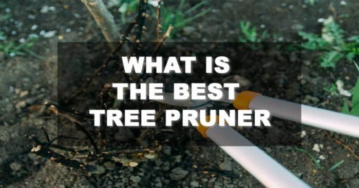Best Tree Pruner