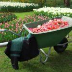12 Best Wheelbarrows Buying Guide & Reviews | Compare World's best WheelBarrows 2019