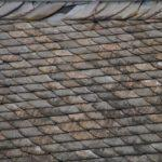 Roofing insulation does much more than making homes energy efficient