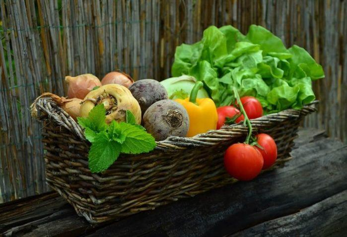 Sustainable Lifestyle And Green Living Tips