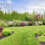 Lawn Care Maintenance | Grow A Beautiful Lawn Naturally