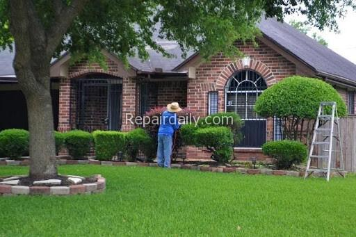 man taking care of lawn