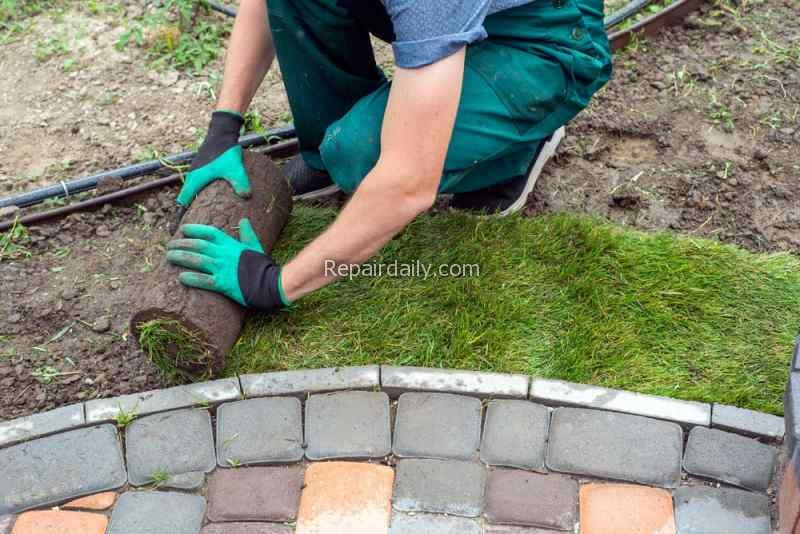 laying_grass_in_the_garden