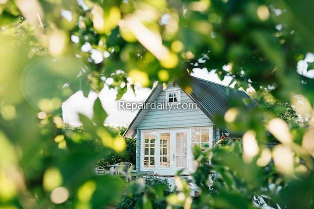 home tree windows